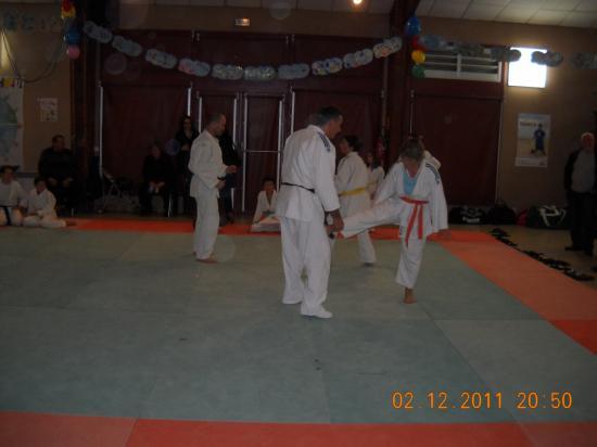 Judo 03 téléthon 2011