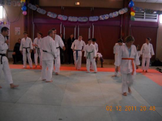 Judo 04 téléthon 2011
