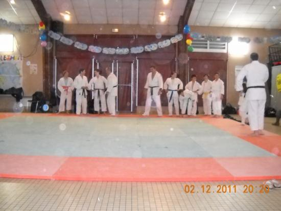 Judo 13 téléthon 2011